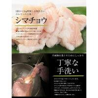 【ふるさと納税】ホルモン西京味噌焼き600g