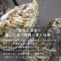 【ふるさと納税】育成岩がき大10個入4kg前後生食用父の日