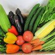 【ふるさと納税】ファーマーズマーケットたわわ朝霧 亀岡産野菜セット