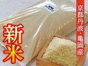 【ふるさと納税】【平成30年度産 新米】コシヒカリ発祥のルー...