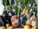 【ふるさと納税】【定期便】旬の京野菜 特選 毎月お届けAコー