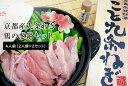【ふるさと納税】京都産九条ねぎ 鶏の葱鍋セット4人前(2人前...