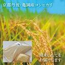 【ふるさと納税】【令和元年産】京都・亀岡産コシヒカリ 20k