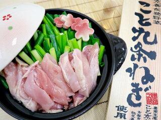 九条ネギ鶏の葱鍋