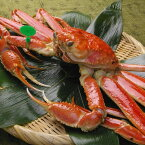 【ふるさと納税】京丹後市産 茹で間人蟹(たいざがに) 厳選 大サイズ