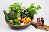 【ふるさと納税】【定期便3回分】オーガニック野菜セット&調味料2種セット(有機やさいドレッシング、サーディンソース)