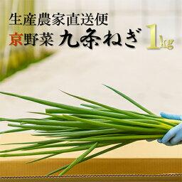 【ふるさと納税】生産農家直送 京野菜・九条ねぎ 約1kg 【野菜・ねぎ・京野菜・九条ねぎ・ネギ】