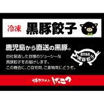 【ふるさと納税】黒豚