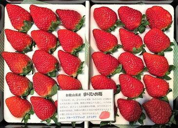 [ふるさと納税]R180D【大箱サイズ】まりひめ苺24個〜36個 化粧箱入り