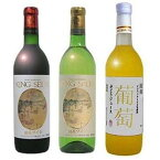 【ふるさと納税】AK103 K.S.柏原醸造ワイン(赤白辛口各1本)とぶどうジュース(1本)