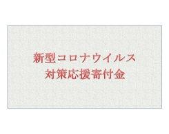 【ふるさと納税】No.092新型コロナウイルス対策応援寄付金5,000円