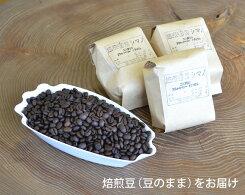 【ふるさと納税】No.002焙煎香房シマノ至高のスペシャルティコーヒー(豆)
