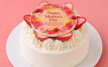 【ふるさと納税】2021 お母さん ありがとう 母の日 プレートケーキ ※母の日当日には届きません_0N37