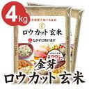 【ふるさと納税】金芽ロウカット玄米4kg(2kg×2袋)