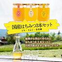 【ふるさと納税】神戸養蜂場 兵庫県産はちみつ3本セット