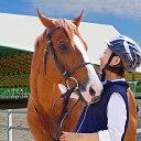 【ふるさと納税】明石乗馬協会 プレミアム乗馬体験コース 【体験チケット・乗馬・体験・スポーツ・アウトドア】