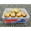 【ふるさと納税】CY52*淡路島玉葱の大玉 (中生) 10kg