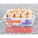 【ふるさと納税】CY92:淡路島産 玉葱 10kg 中生