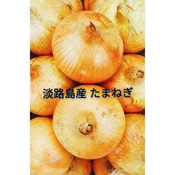 【ふるさと納税】CY92:淡路島産 玉葱 10kg 中生 画像1
