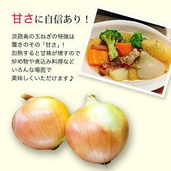 【ふるさと納税】EB17*【5kg】特選 淡路島たまねぎ なかて品種 画像1
