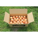 【ふるさと納税】GF11*淡路島産 無肥料・無農薬・自然栽培玉ねぎ(小玉) 5kg