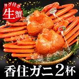 【ふるさと納税】(期間限定)タグ付き香住ガニ(生)約800g×2枚 / かに カニ 蟹