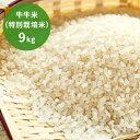【ふるさと納税】牛牛米(特別栽培米)9kg 【米・おこめ・コ...