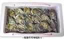 【ふるさと納税】赤穂産かき(殻付き2.5kg)【魚貝類/生牡蠣/かき・カキ・シーフード】お届け:2018年11月20日頃から2019年4月まで