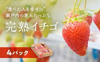 【ふるさと納税】赤穂市産イチゴ 200g×4パック 【果物類/いちご/苺/イチゴ・ストロベリー・くだもの・フルーツ】 お届け:2020年12月下旬〜2021年5月中旬