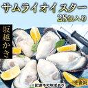 【ふるさと納税】坂越かき 殻付き27個(牡蠣ナイフ・軍手付き...