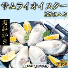 兵庫県産 殻付き28個(牡蠣ナイフ・軍手付き)サムライオイスター