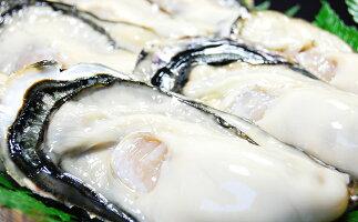 【ふるさと納税】坂越かき 殻付き60個(牡蠣ナイフ・軍手付き)サムライオイスター 【魚貝類・生牡蠣・かき・カキ・シーフード】 お届け:2020年12月上旬〜2021年5月上旬