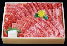 【ふるさと納税】黒田庄和牛(焼肉用ロース・600g)