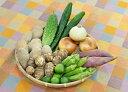 【ふるさと納税】【旬のお野菜詰め合わせセットA】農産物直売所...