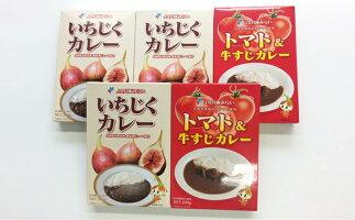 【ふるさと納税】いちじく・トマト&牛すじカレーセット 【お肉】