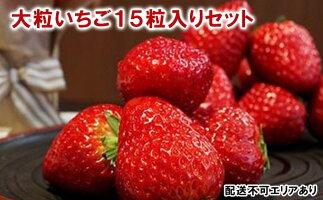 【ふるさと納税】いちご15粒入り食べ比べセット(3品種) 【果物類・いちご・苺・イチゴ】 お届け:2021年1月中旬〜2021年2月20日まで