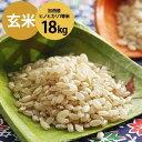 【ふるさと納税】令和元年産 加西産ヒノヒカリ1等米 18kg