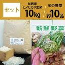 【ふるさと納税】加西産ヒノヒカリと季節の野菜詰め合わせ 【野菜類・セット・詰合せ・やさい・お米・おこめ】