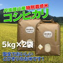 【ふるさと納税】お米のおいしさ伝えたい!特別栽培米コシヒカリ5kg×2 | お米 おこめ ブランド米...