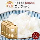 【ふるさと納税】お米のおいしさ伝えたい!特別栽培米コシヒカリ...