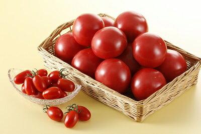 【ふるさと納税】完熟たんばトマトの詰合せ 約2.7kg入り