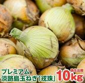 """【ふるさと納税】こだわり栽培の甘くて美味しい""""えびすたま""""「晩生品種10kg」をお届け。"""