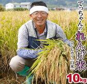 【ふるさと納税】2018年収穫南あわじ市松帆産てっちゃんのれんげ米コシヒカリ10(白米)