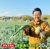 【ふるさと納税】【緊急支援品】淡路島たまねぎ20キロ(10kg×2)