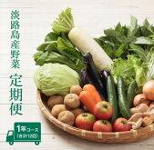 【ふるさと納税】淡路島産野菜定期便1年セット