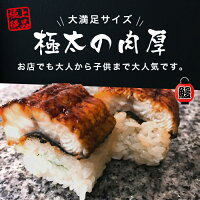 【ふるさと納税】H-134極太肉厚うなぎ棒寿司(300g〜400g)×2本セット