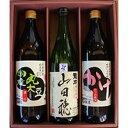 【ふるさと納税】170 こだわり醤油と特別純米「山田穂」詰め合わせ
