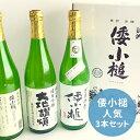 【ふるさと納税】倭小槌 人気3本セット 【お酒・日本酒・大吟...