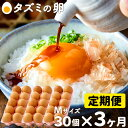 【ふるさと納税】015AB01N. タズミの卵 定期便 全3