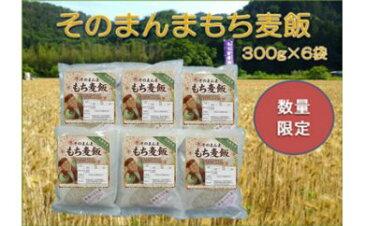 【ふるさと納税】A014 そのまんま もち麦飯 おためしセット